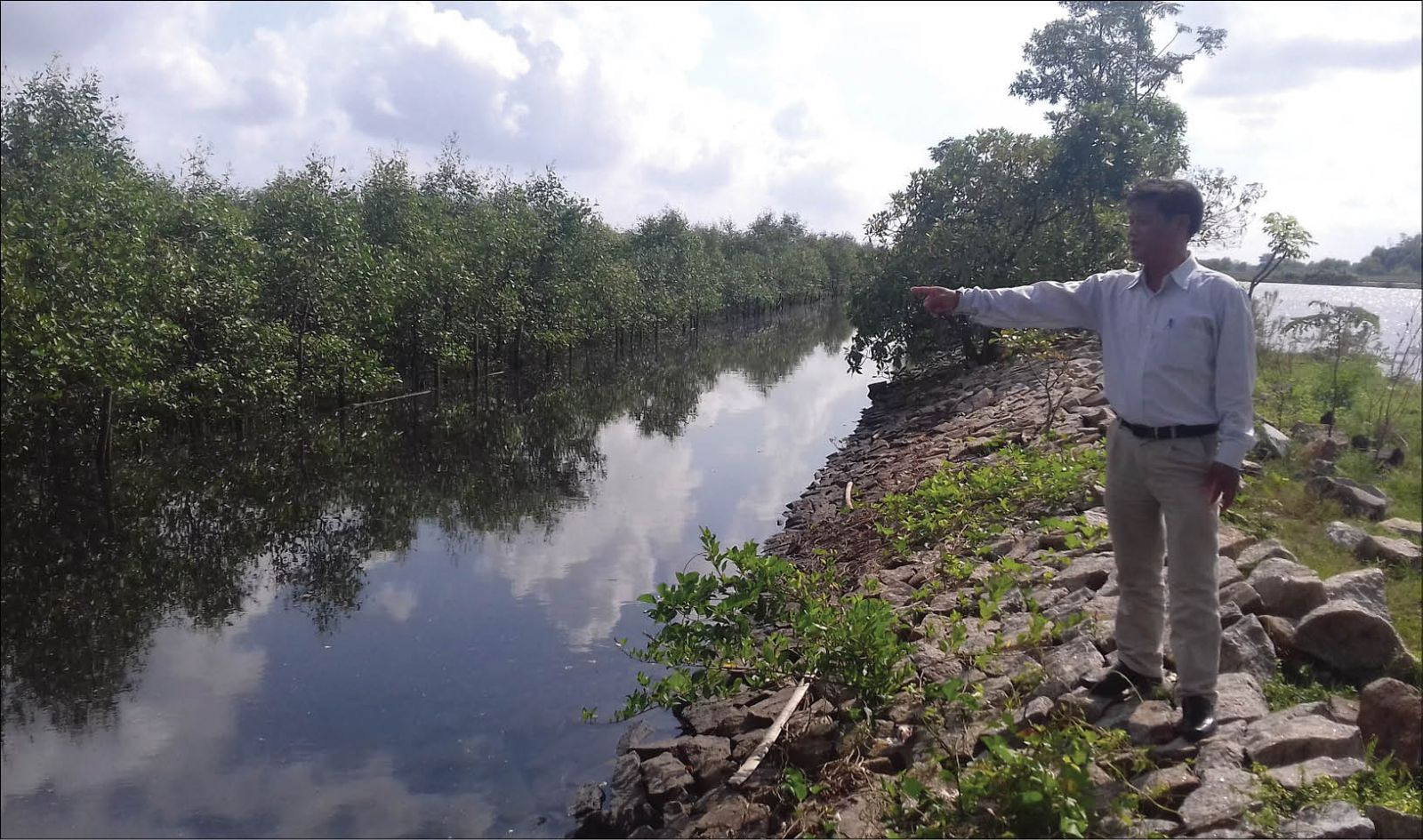 Ecotourism from Quang Loi mangrove forest