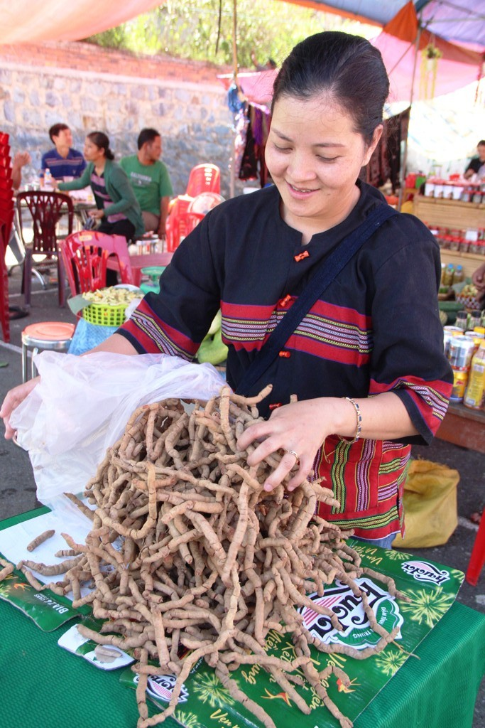 Ba Kich Ginseng product of A Luoi is also introduced in this space