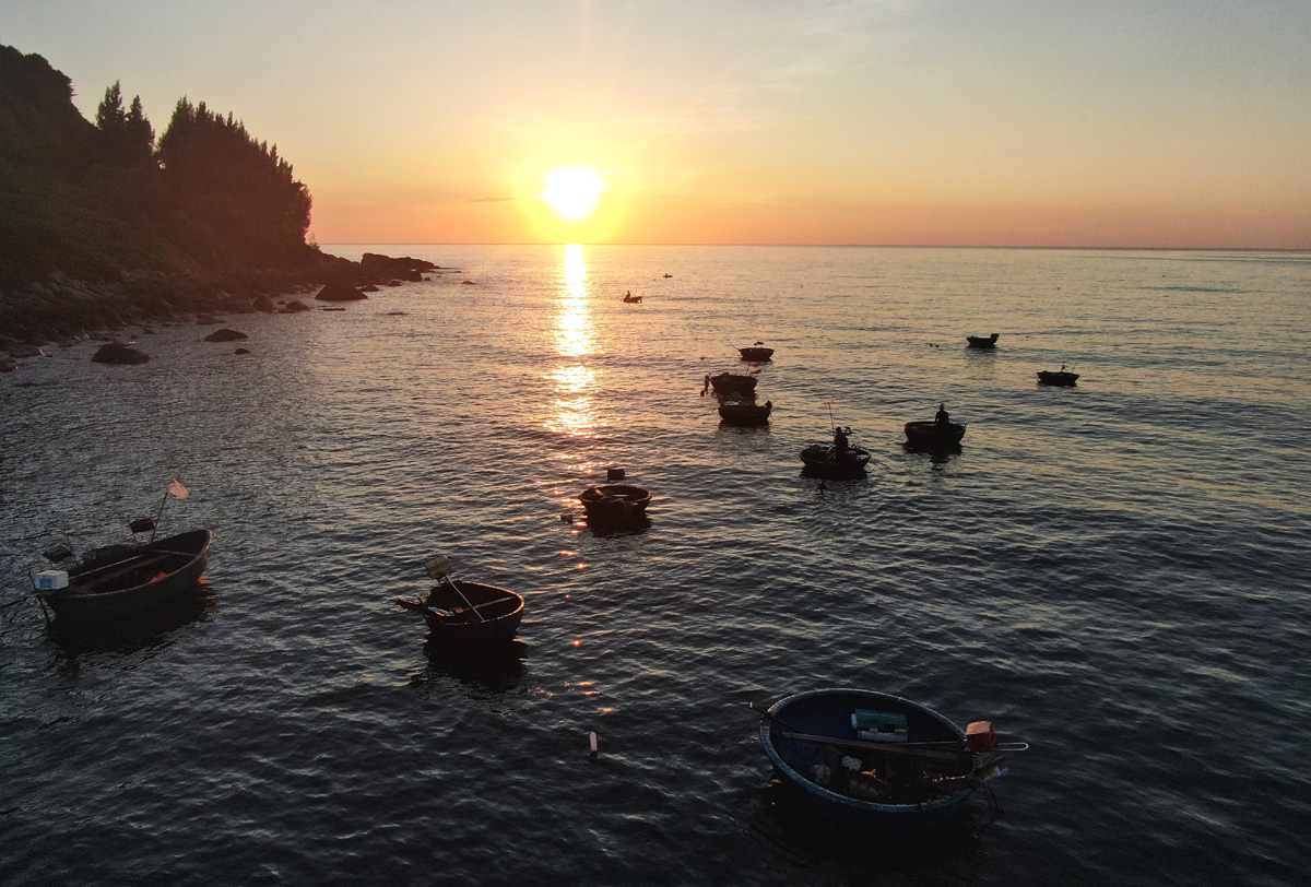 Squid fishing boats return at dawn