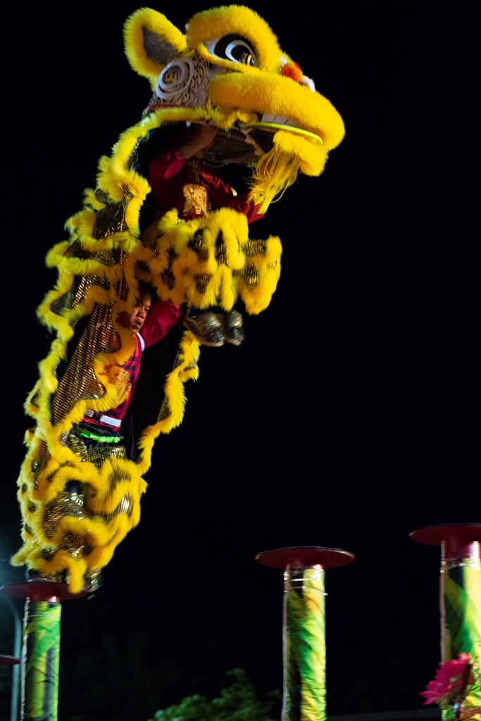 """A """"Mai Hoa Thung"""" performance - one of the special items attracting viewers"""