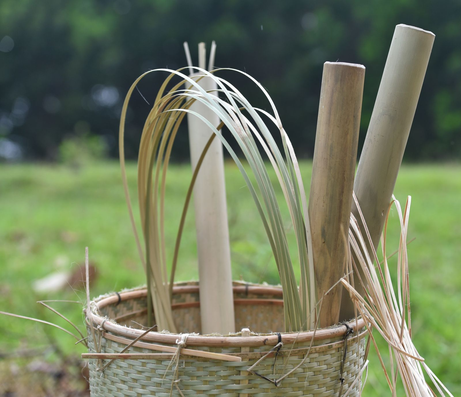 Rattan is the material that makes up strong baskets