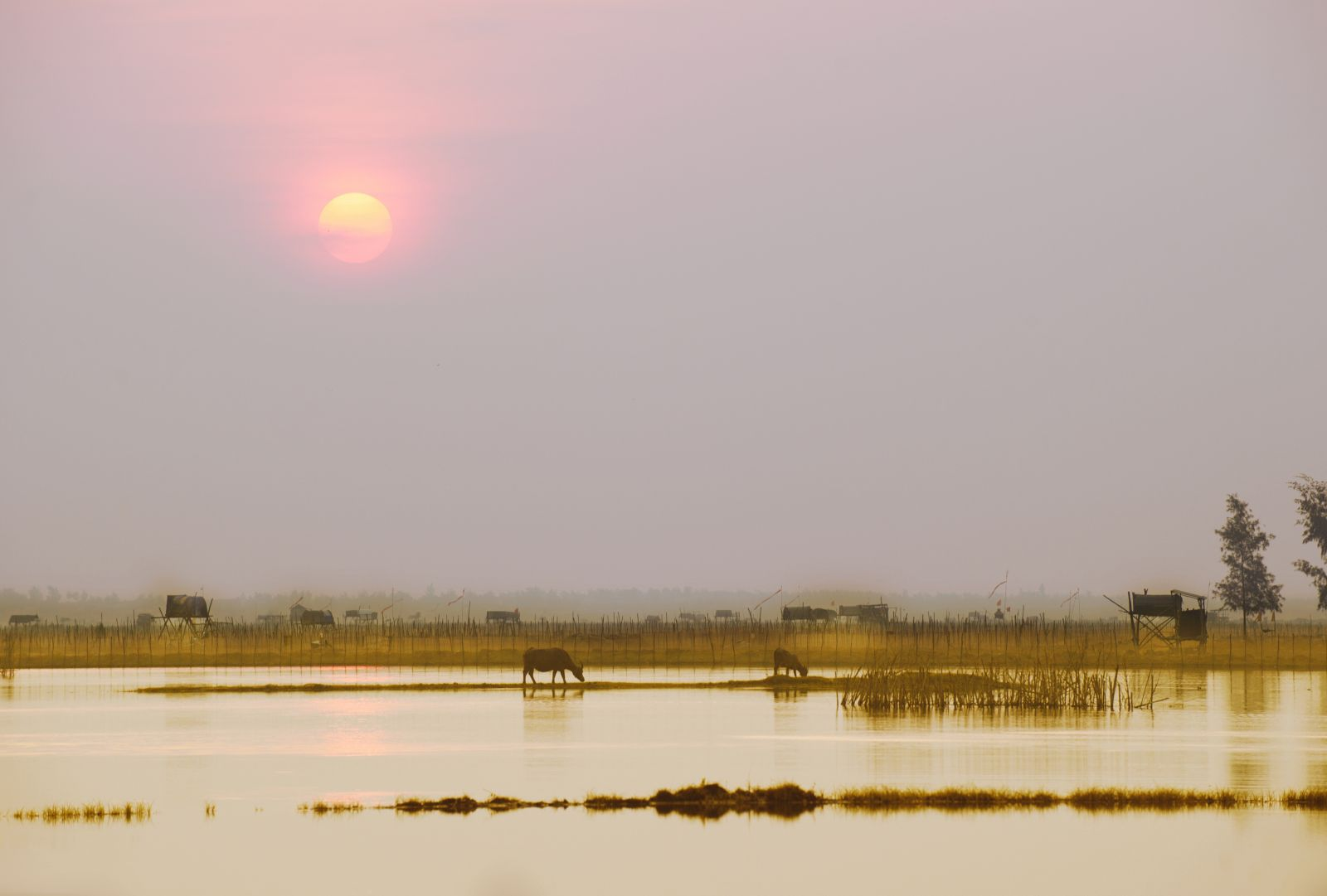 The sun rising in autumn is also soft and surprisingly peaceful, Autumn dawn in Chuon lagoon
