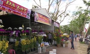 Bustling Tet flower markets