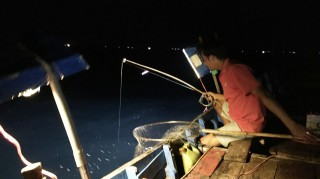 Squid fishing at night