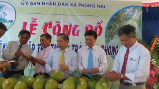 The Pomelo of Phong Thu granted the collective trademark
