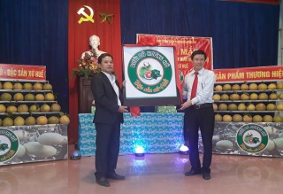 Launching Huong Ho red grapefruit brand name