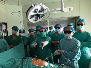 Hue Central Hospital: Developing high-tech synchronized 3D endoscopy