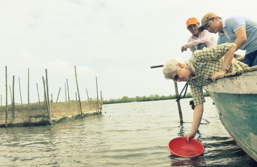 TAZ readers admire the beauty of Tam Giang Lagoon