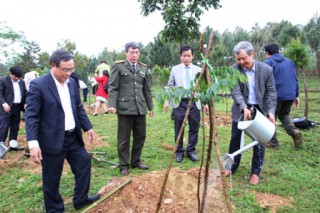 Growing 120 new ironwood trees at the Tree-growing Tet launching ceremony
