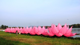 Vesak 2562 in Hue: Seven giant lotus lanterns launched onto Perfume River