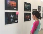 Nearly 1,300 works attend the North Central Vietnam Photography Festival in 2018