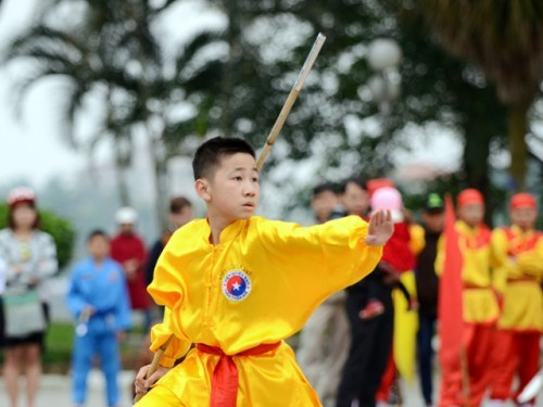 Training traditional martial arts in High schools of the Central Region and Central Highlands Region