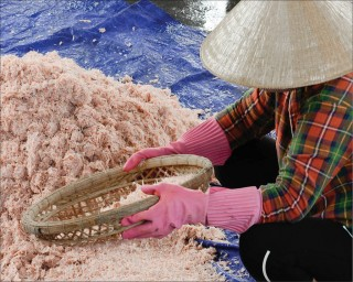 The elaborateness in making traditional fish sauce