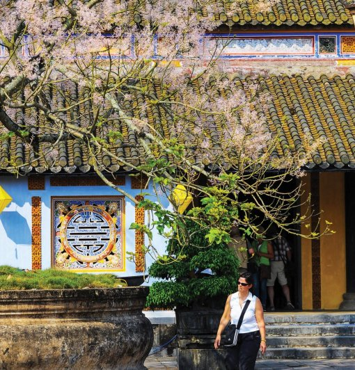 Flower streets to feature Hue beauty