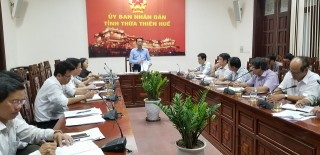 Hue City to organize World Environment Day with practical activities