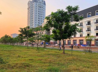 Greening An Van Duong new urban area