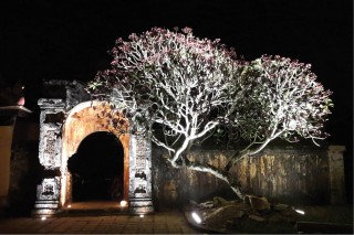 Truong Phuoc Thanh & the story of artistic lighting