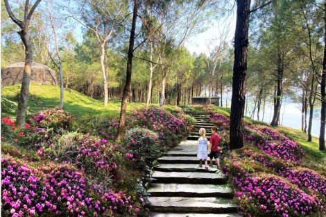 To turn Vong Canh hill into a tourist attraction