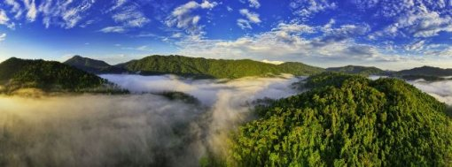 A Luoi mountain and forest blurred in the mist