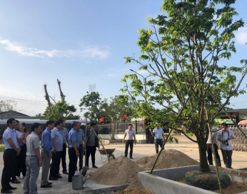 """Building, managing and developing geographical indications """"Hue"""" for Hoang Mai (Yellow apricot blossom) products"""
